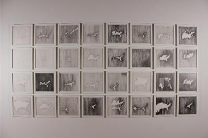 Paper Forest - Anne J. Lindberg