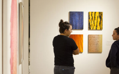 NIU Art Museum opens School of Art and Design Faculty Biennial exhibition Jan. 14
