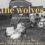 "Theatre and Dance presents ""The Wolves"" Feb 22-23, 27-29"