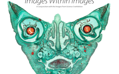 Science photographer Michael Peres to speak at School of Art and Design